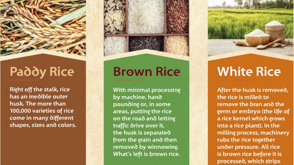 Food: Why Brown Rice Is Healthier
